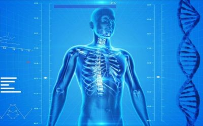Can patients with osteoporosis enjoy chiropractic care?